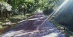 path 4a