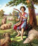 David052
