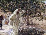 Jesus_Curses_Fig_Tree_James